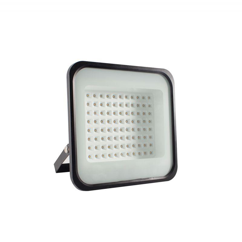 פלנט פרוז'קטור צמחיה Full Spectrum 100W LED