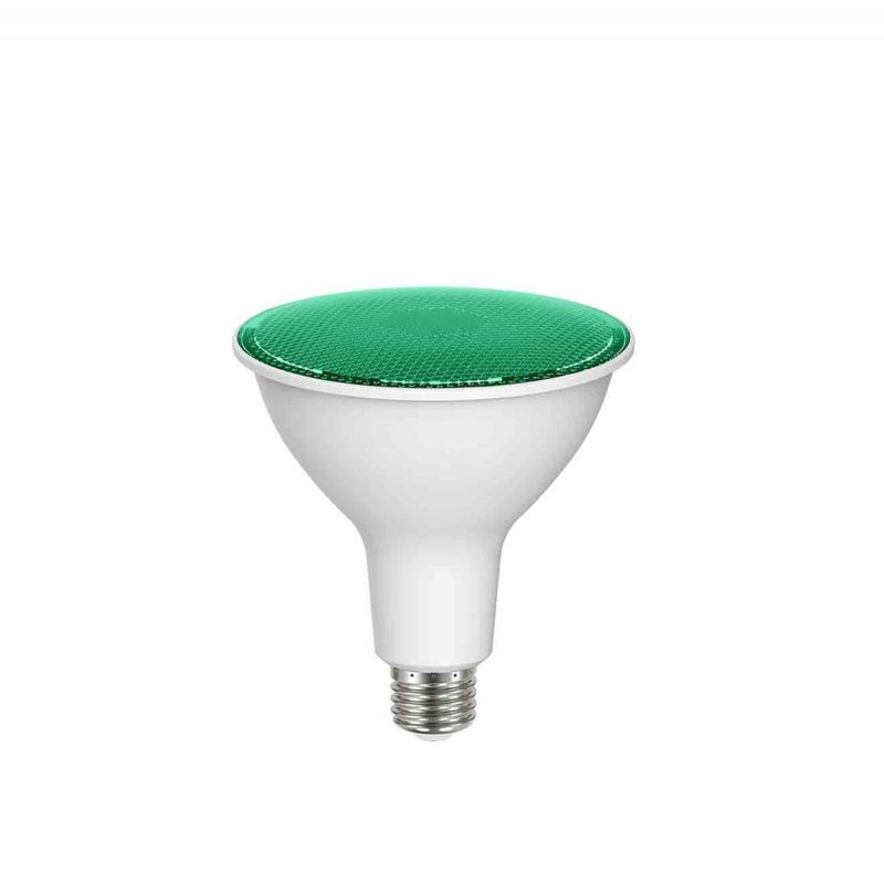 לדרסון LED IP65 14W PAR38 ירוק