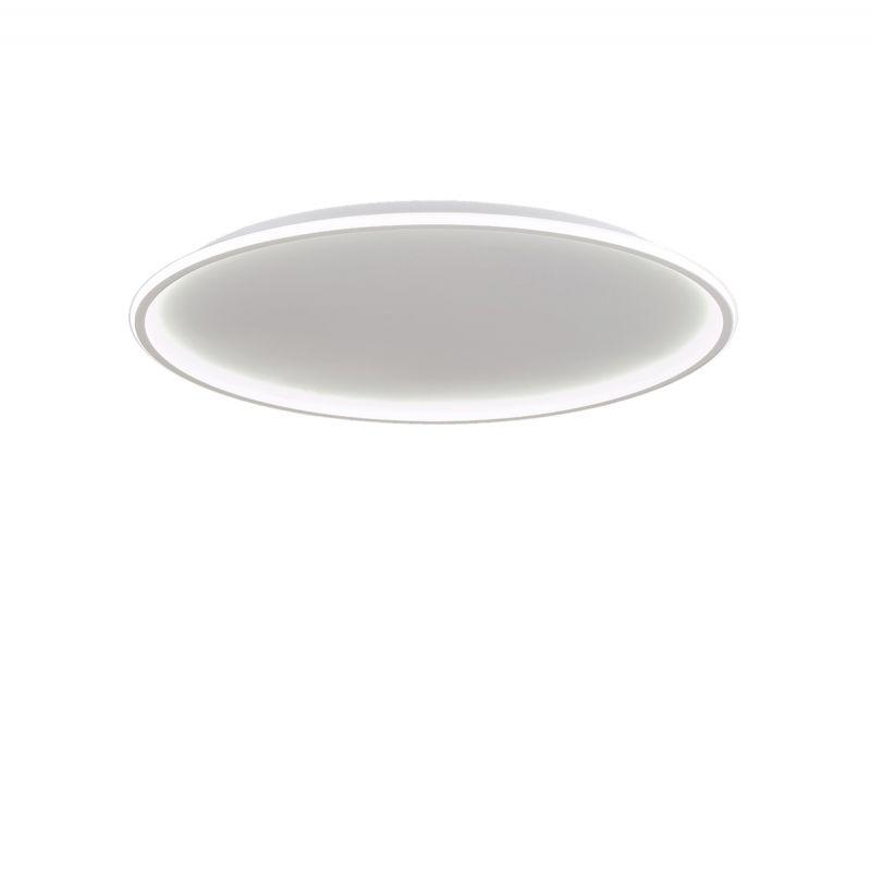 אדיפוס צמוד LED